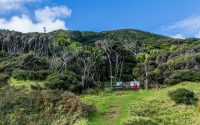 East Cape Lighthouse walk